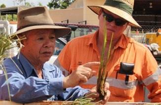 Dr.Paul Trương là thành viên Ban Giám đốc, Đại diện Khu vực Châu Á & Thái Bình Dương của Mạng lưới Vetiver Quốc tế, Cố vấn trực tiếp của Mạng lưới Vetiver Việt Nam và Quỹ Phát triển Vetiver thành phố Đà Nẵng. Trong suốt nhiều năm qua, ông đã cống hiến hết mình vào sự nghiệp nghiên cứu triển khai ứng dụng Hệ thống cỏ Vetiver trong lĩnh vực bảo vệ môi trường, xử lý chất thải độc hại, xử lý nước thải, phục hồi vùng mỏ sau khai thác. Rất nhiều báo cáo khoa học có giá trị của ông đã xuất bản và được dịch ra nhiều thứ tiếng trên thế giới.